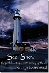 sea snow